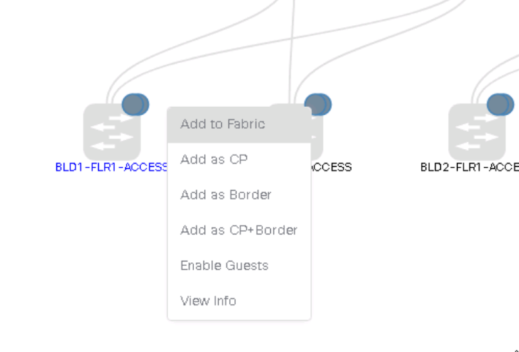 Add access switch as Edge Node